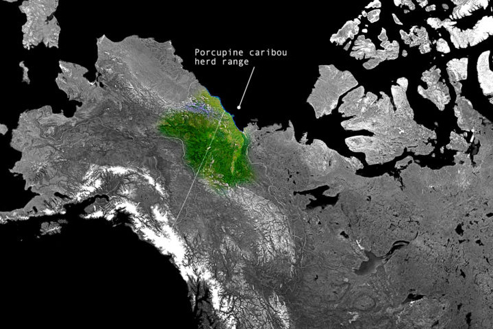 Interactive map Caribou