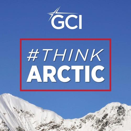 Think Arctic