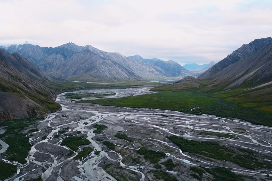 Stand Up for the Arctic National Wildlife Refuge